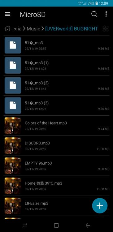Screenshot_20190212-120951_File Manager.jpg